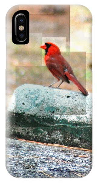 IPhone Case featuring the photograph Cardinal by Donna Bentley