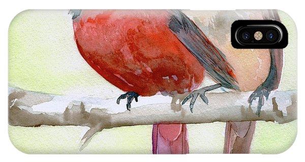 Cardinals IPhone Case