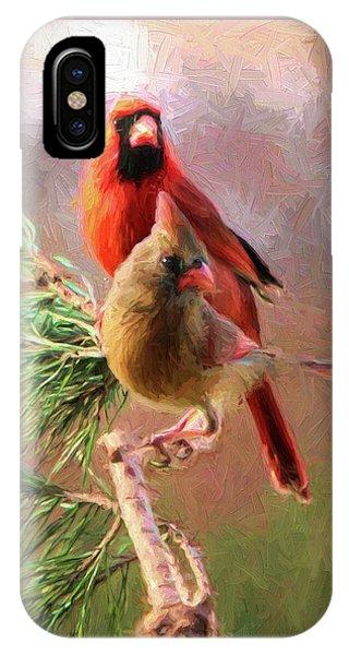 Cardinals2 IPhone Case