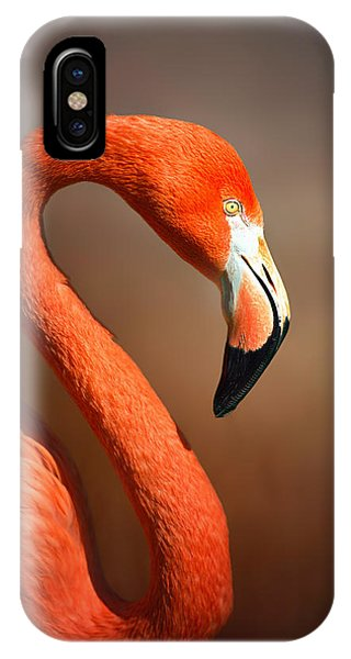 Caribean Flamingo Portrait IPhone Case