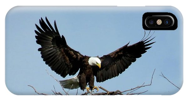 Cape Vincent Eagle IPhone Case
