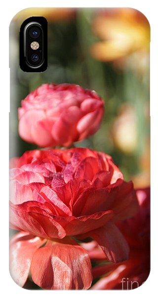 Carnival Of Flowers 01 IPhone Case