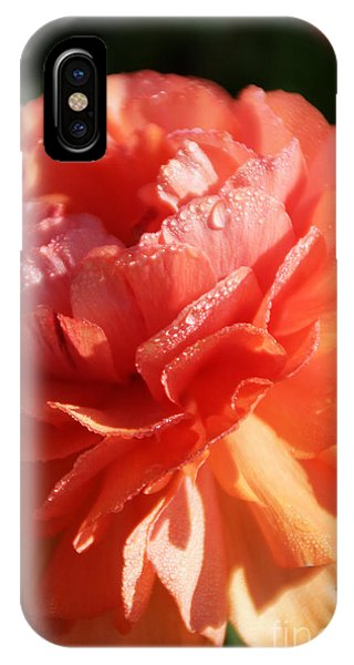 Carnival Of Flowers IPhone Case
