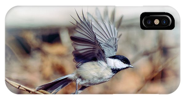 Carolina Chickadee - Come Fly With Me  IPhone Case