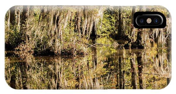 Golden Gardens iPhone Case - Carolina Swamp by DiFigiano Photography