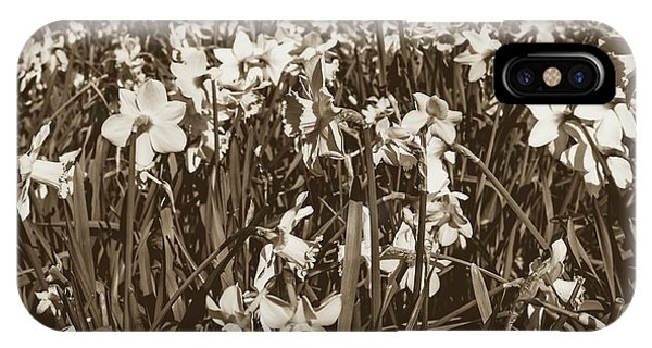 IPhone Case featuring the photograph Carpet Of Daffodils by Jacek Wojnarowski
