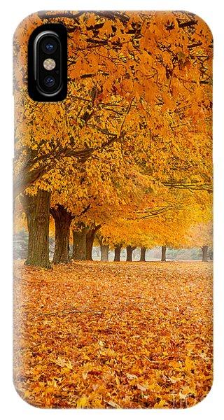 Carpet Of Gold II IPhone Case