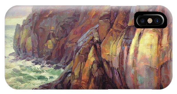 Pacific Ocean iPhone Case - Cascade Head by Steve Henderson