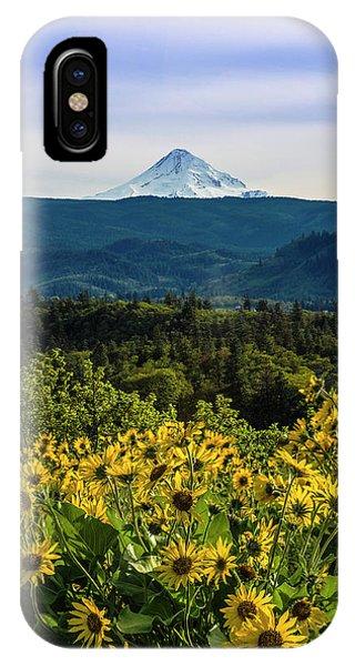 Cascade Spring IPhone Case