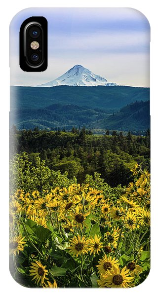 Cascade Spring IPhone Case