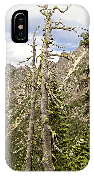 Cascades Tree IPhone Case
