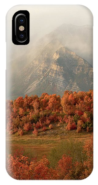 Cascading Fall IPhone Case