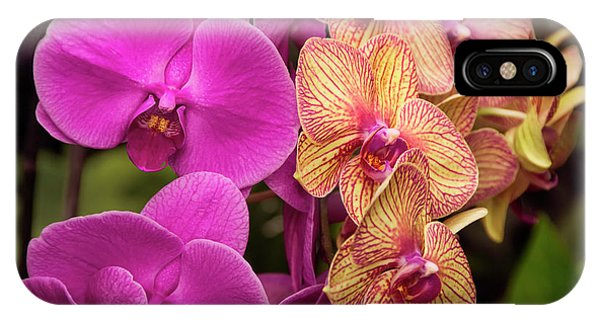 IPhone Case featuring the photograph Cascading Orchids by Penny Lisowski