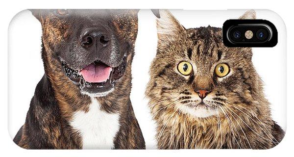 Cat And Dog Closeup IPhone Case