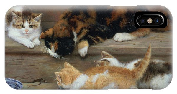 Cat And Kittens Chasing A Mouse   IPhone Case