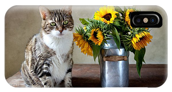 Oil iPhone Case - Cat And Sunflowers by Nailia Schwarz