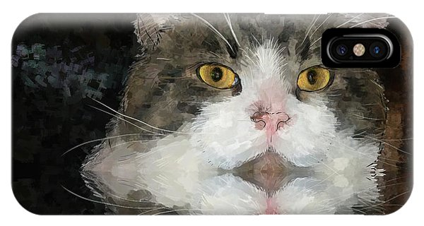 Cat At The Table IPhone Case