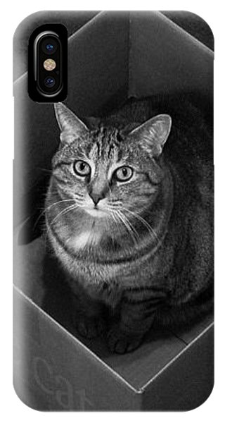 Cat Box Sitting Black And White 51654 300x480 IPhone Case