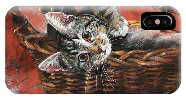 Basket iPhone Case - Cat In The Basket by Ylli Haruni