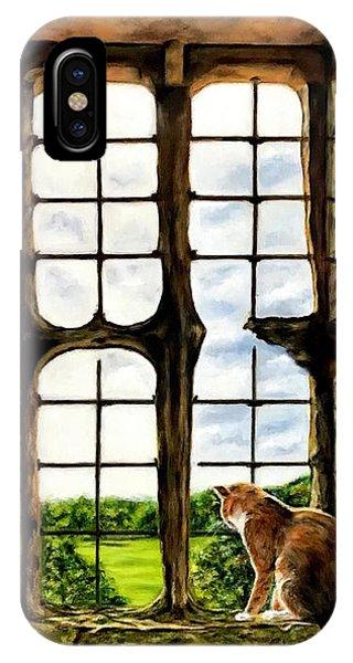 Cat In The Castle Window IPhone Case