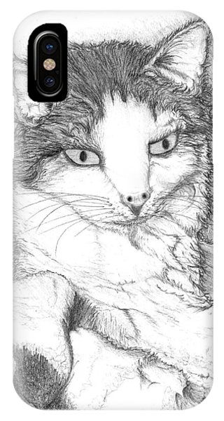 IPhone Case featuring the drawing Domestic Cat by Jason Girard