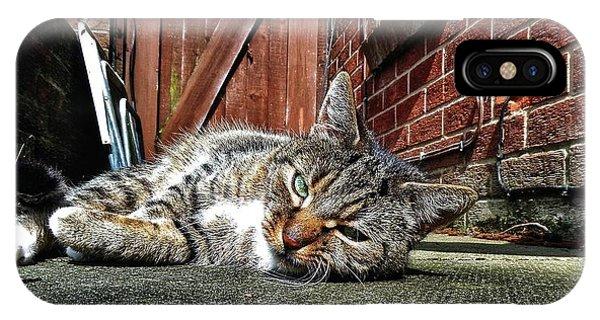 Cat Life IPhone Case