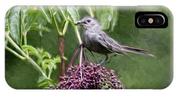 Catbird IPhone Case