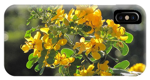 Catchlight Bee Over Yellow Blooms IPhone Case