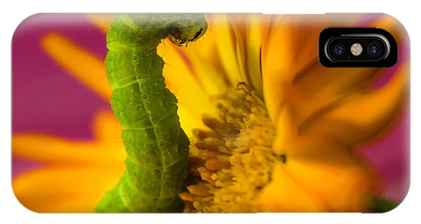 Caterpillar In Flower IPhone Case