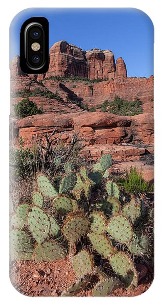 Cathedral Rock Cactus Grove IPhone Case