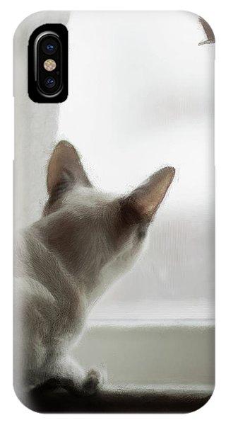 Cat In The Window IPhone Case