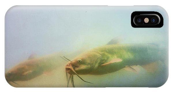 Catfish iPhone Case - Cats In The Water by Susan Capuano