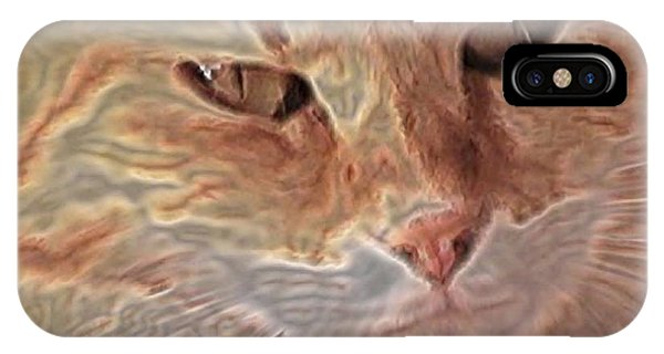 iPhone Case - Cats Know by Uldra Johnson