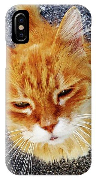 IPhone Case featuring the digital art Cats Of Amalfi - Amalfi, Italy by Joseph Hendrix