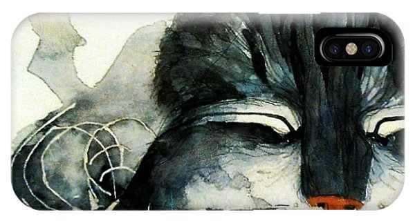 Kitten iPhone Case - Cats Whiskers by Paul Lovering