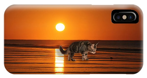 iPhone Case - Cattin Fripp Island by Cynthia Leaphart