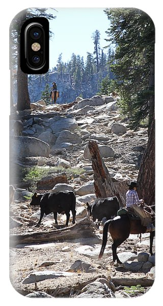 Cattle Climbing IPhone Case