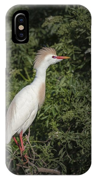 Cattle Egret IPhone Case