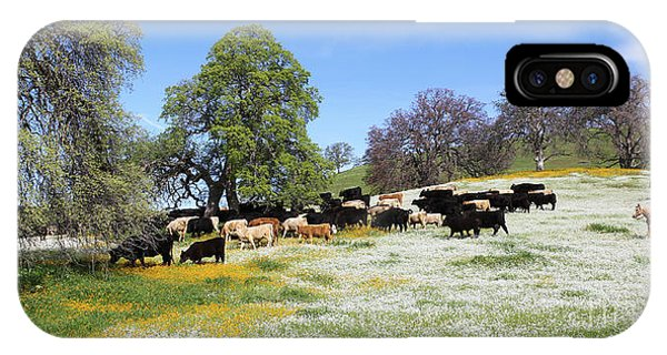 Cattle N Flowers IPhone Case