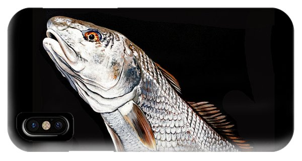 Caught In The Surf Redfish IPhone Case