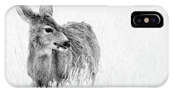 Mule Doe IPhone Case