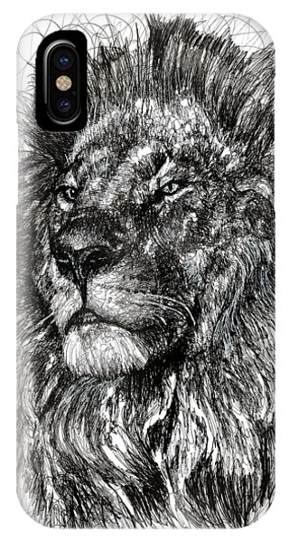 Lions iPhone Case - Cecil The Lion by Michael Volpicelli