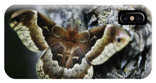 Cecropia Moth IPhone Case