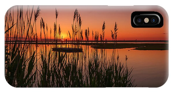 Cedar Beach Sunset In The Reeds IPhone Case