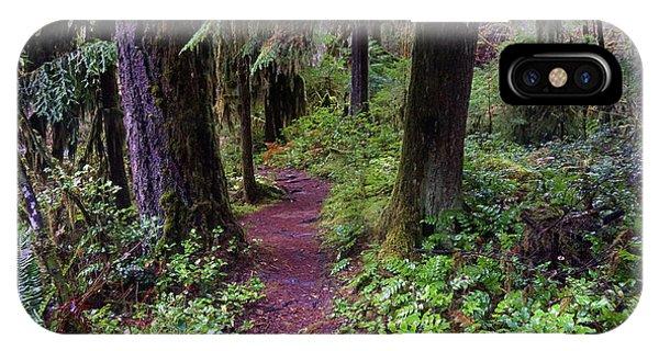 Cedar Creek Trail #3 IPhone Case