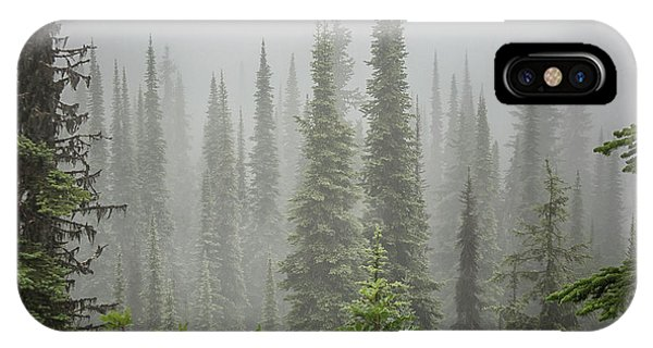 Rocky Mountain Np iPhone Case - Cedars In Fog by Patricia Hofmeester