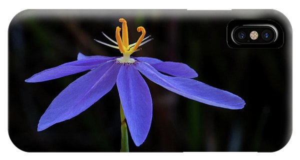 Celestial Lily IPhone Case