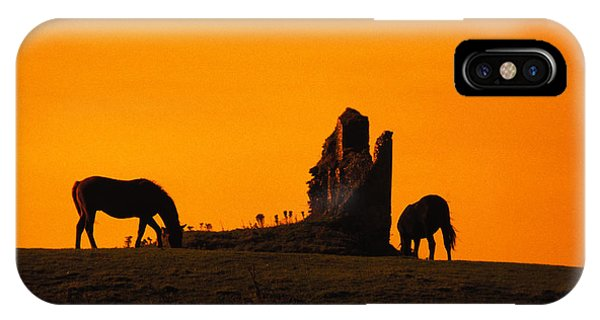 Celtic Horses At Sunset Phone Case by Carl Purcell