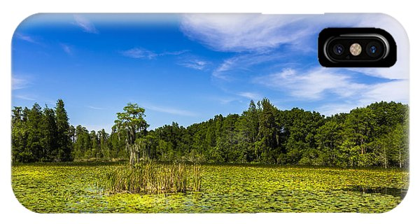 Cypress iPhone Case - Center Cypress by Marvin Spates