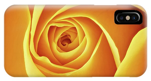Center Of A Yellow Rose IPhone Case